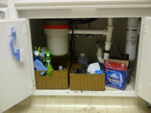 Garbage disposal and water filter leave little room for anything else!